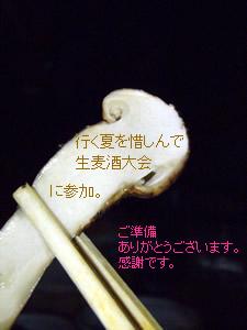 080929natsu1.jpg
