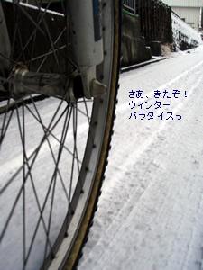 090106snow.jpg